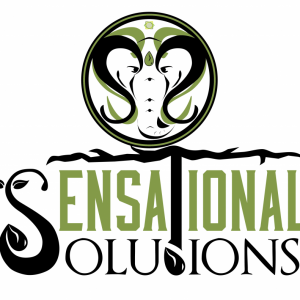 Elephant_Solutions-01
